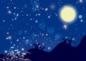 月を見るうさぎ