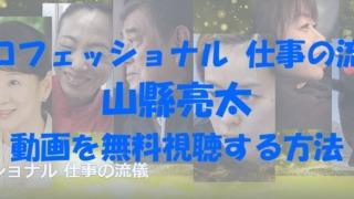 プロフェッショナル 仕事の流儀 山縣亮太 動画