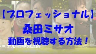 プロフェッショナル 桑田ミサオ 動画