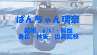 ぱんちゃん璃奈 結婚 wiki 経歴 身長 体重 出身高校