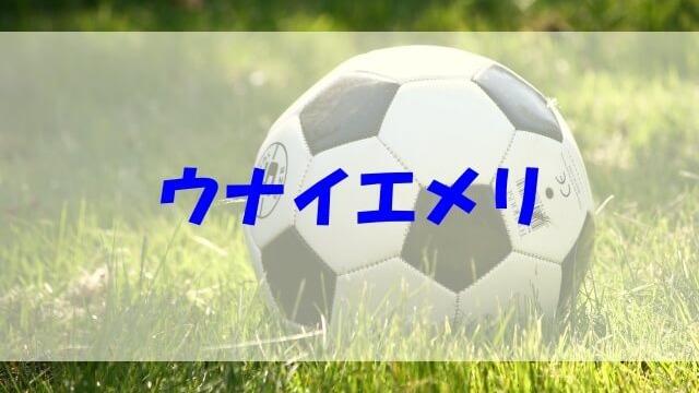 ウナイエメリ 戦術 wiki 経歴 妻 子供