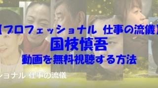 プロフェッショナル 仕事の流儀 国枝慎吾 動画
