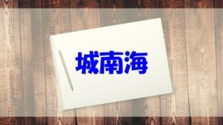城南海 wiki 年齢 経歴 高校 大学 結婚 彼氏 旦那