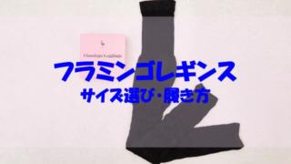 フラミンゴレギンス サイズ 選び 履き方