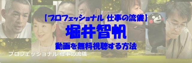 プロフェッショナル 仕事の流儀 堀井智帆 動画