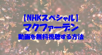 NHKスペシャル マクファーデン 動画