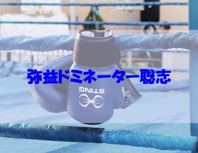 弥益ドミネーター聡志 大学 wiki 会社 勤め先 高校