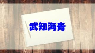 武知海青 高校 年齢 wiki 出身校 水泳
